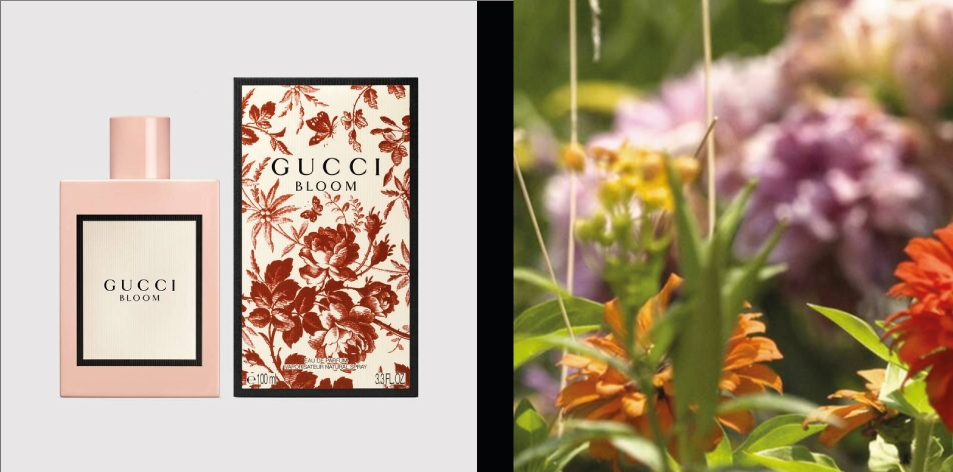 H&S Recommended Fragrance of The Week- For Mothers Day, Spoil Her With- Gucci Bloom