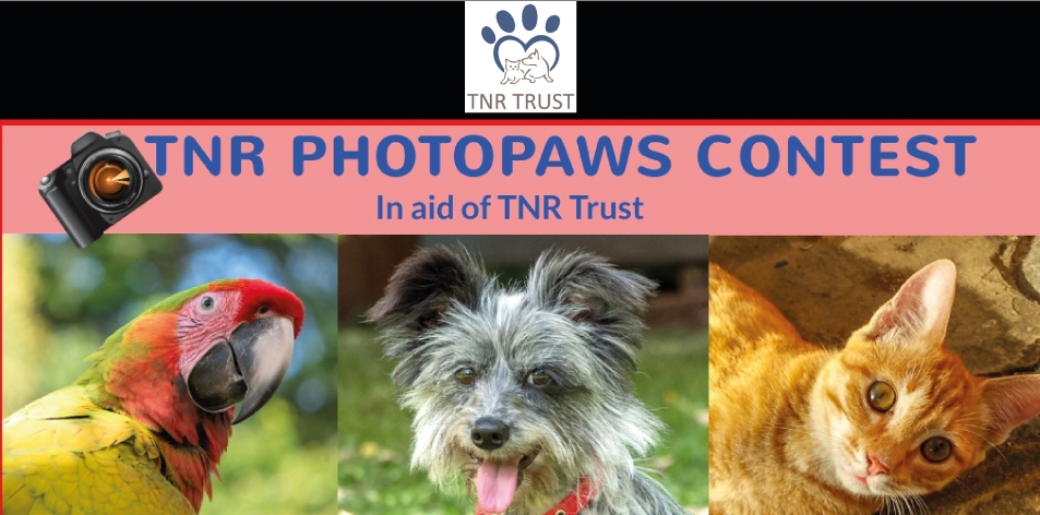 TNR Trust- ENTER THE TNR PHOTOPAWS CONTEST