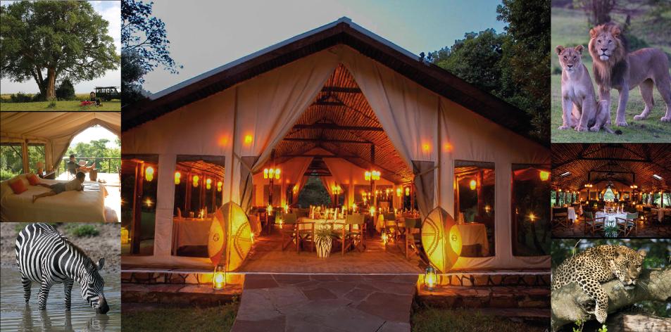 H&S Luxury Package Of The Week- Sekenani Camp 2 Nights/3 Days- Maasai Mara Package