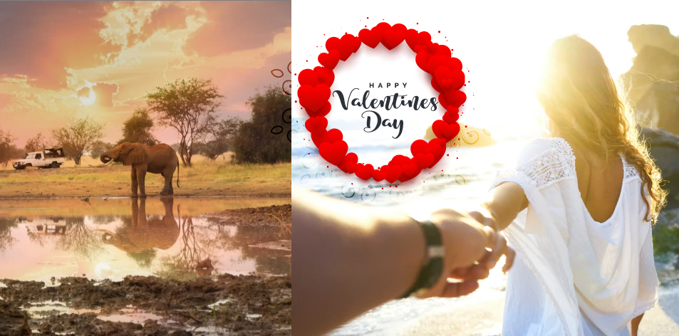 H&S Valentines Day Travel Packages 2021