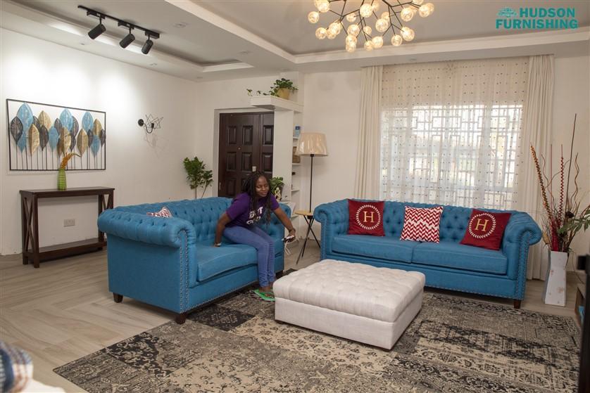 Hudson Furnishing Sofas