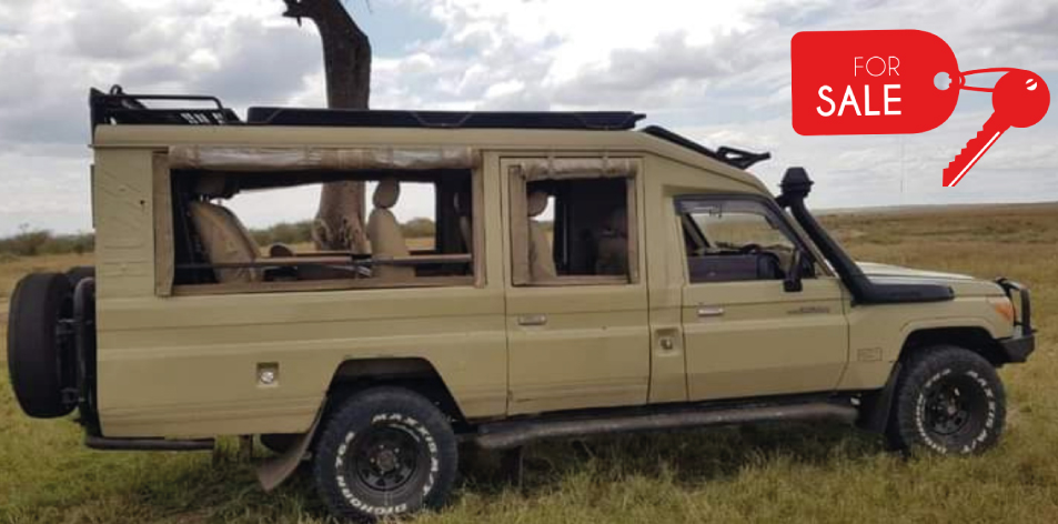 Safari Toyota Land Cruiser