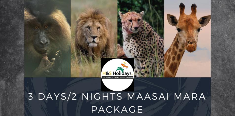Budget Package Maasai Mara